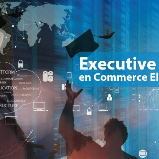 Executive Master en Commerce Electronique